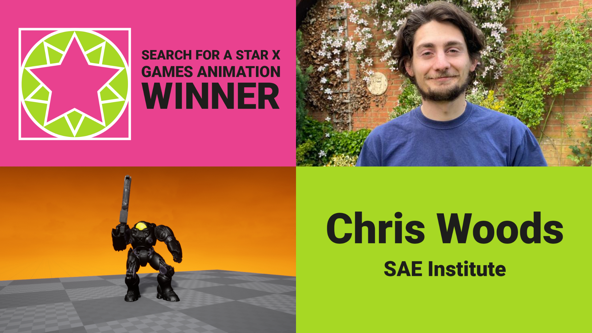 Chris Woods - Search For A Star Winner Games Animation